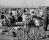 «Ψαράδες και Ψαρέματα»: Ένα άγνωστο ελληνικό αριστούργημα από την Ταινιοθήκη της Ελλάδος